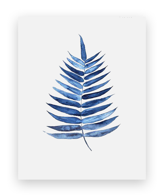 Large Fern Leaf Prints
