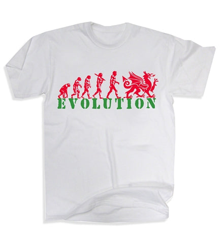 Wales Welsh Dragon Evolution Rugby Football Flag T-Shirt