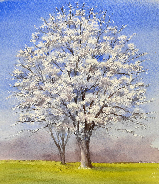 Painting of a Cherry Tree