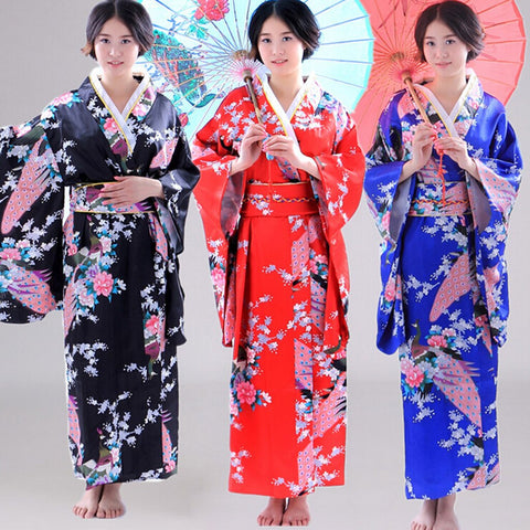 Fancy Traditional Japanese Anime Kimono Dress