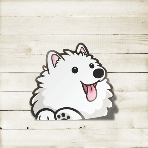 Samoyed Peekabork Decal