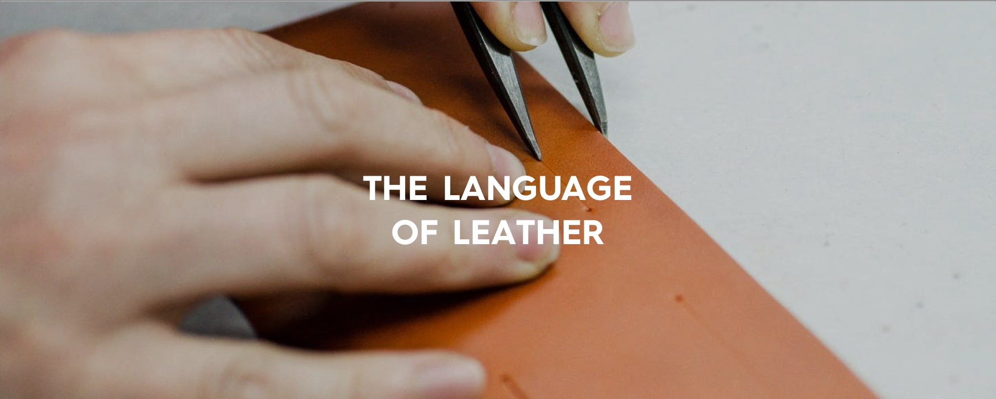Sustainability-The-Language-Of-Leather-Svenklas-Mag