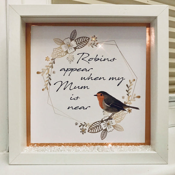 Robins Appear When  Frame