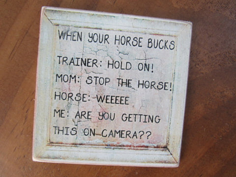 #2599 Magnet When your horse bucks