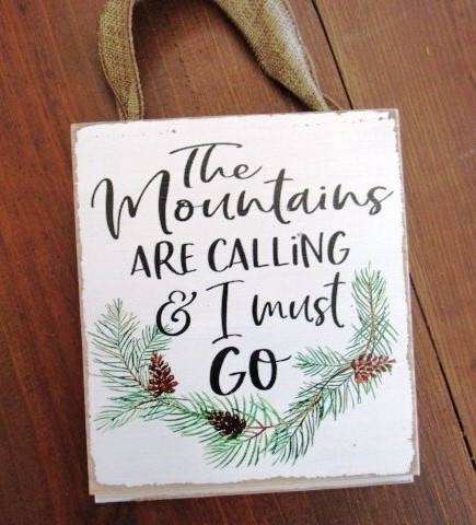 #2817 The mountains are calling and i must go shiplap sign 6x8""