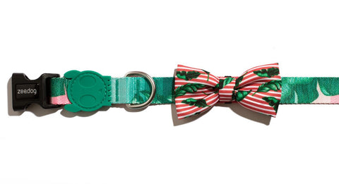 Leash and Bow Tie