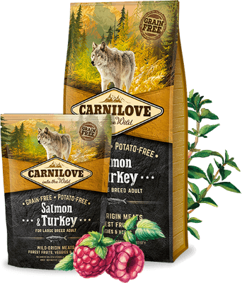 Carnilove - Salmon and Turkey - Large Breed