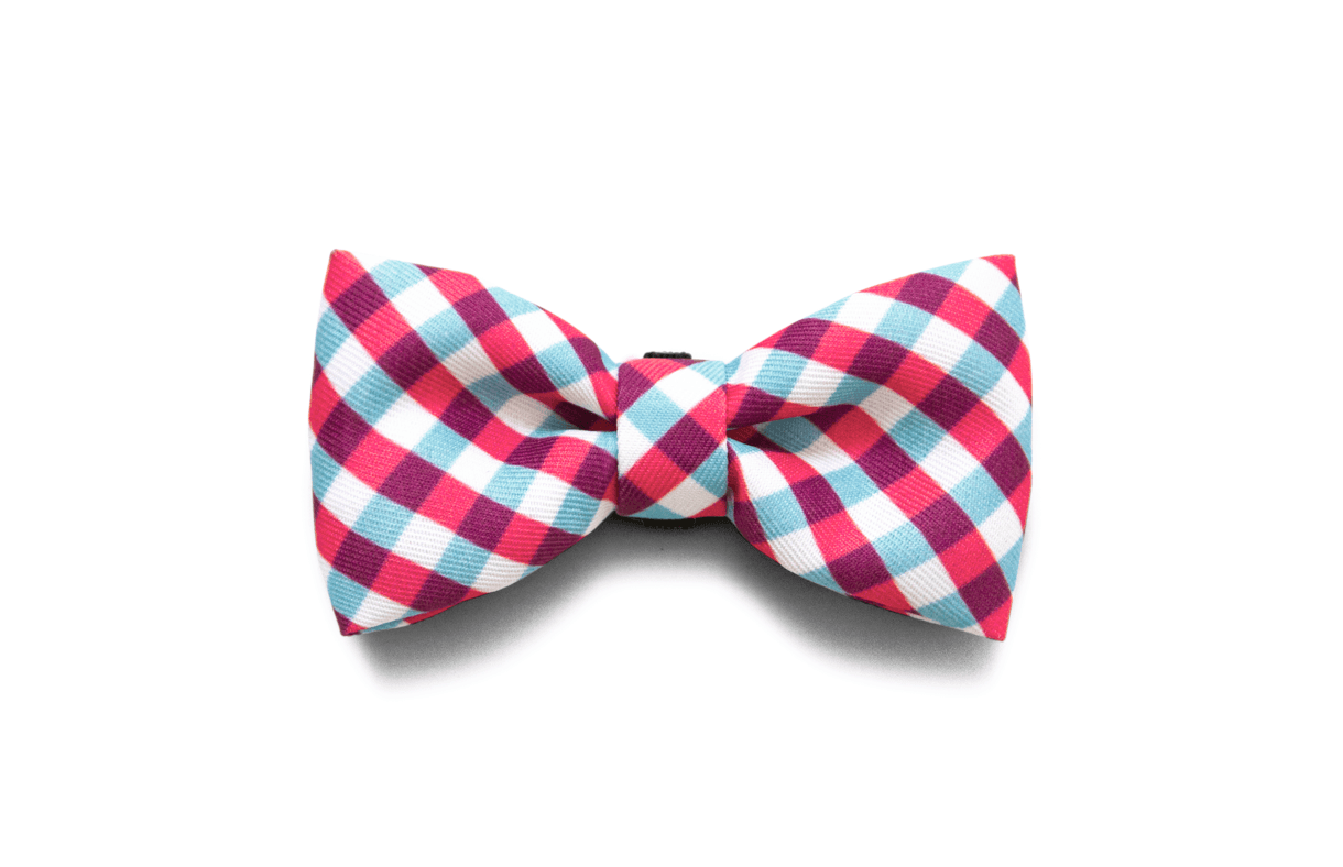 Noeud papillon pour chien - Dog Bow tie - Luxembourg - France