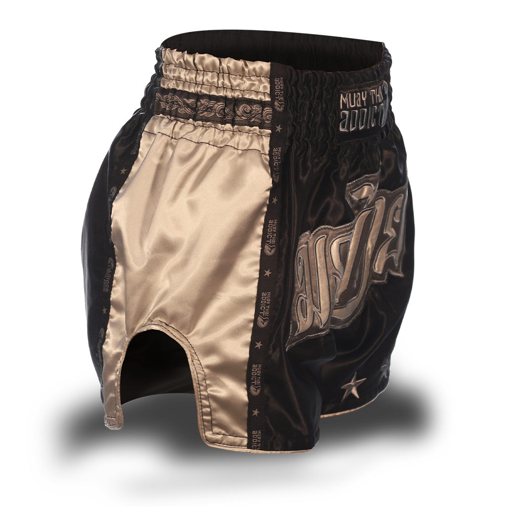Black and Grey Single Panel Stars Muay Thai Shorts