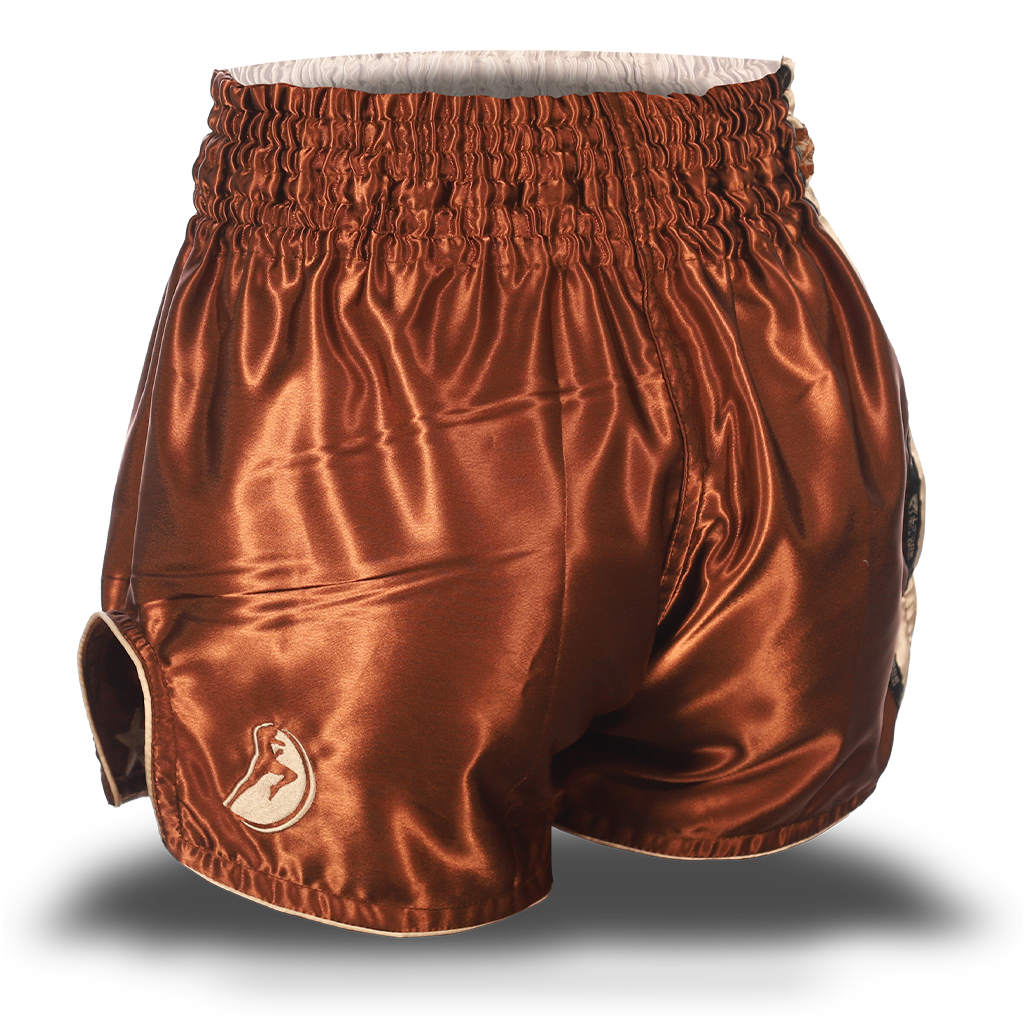 Brown and Beige Single Panel Stars Muay Thai Shorts