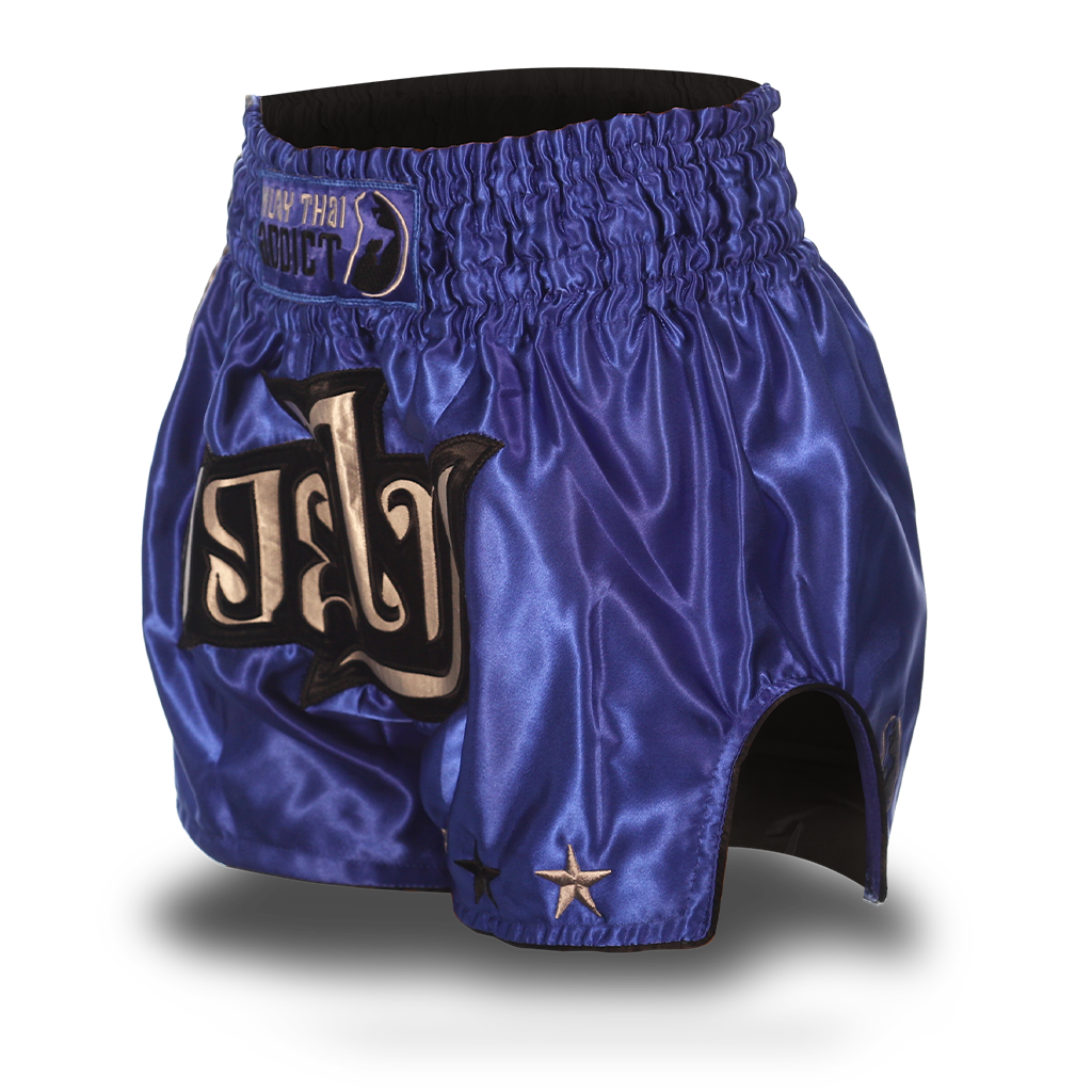 Blue and Grey Single Panel Stars Muay Thai Shorts