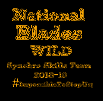 National Blades Synchro Skills Team Shirts