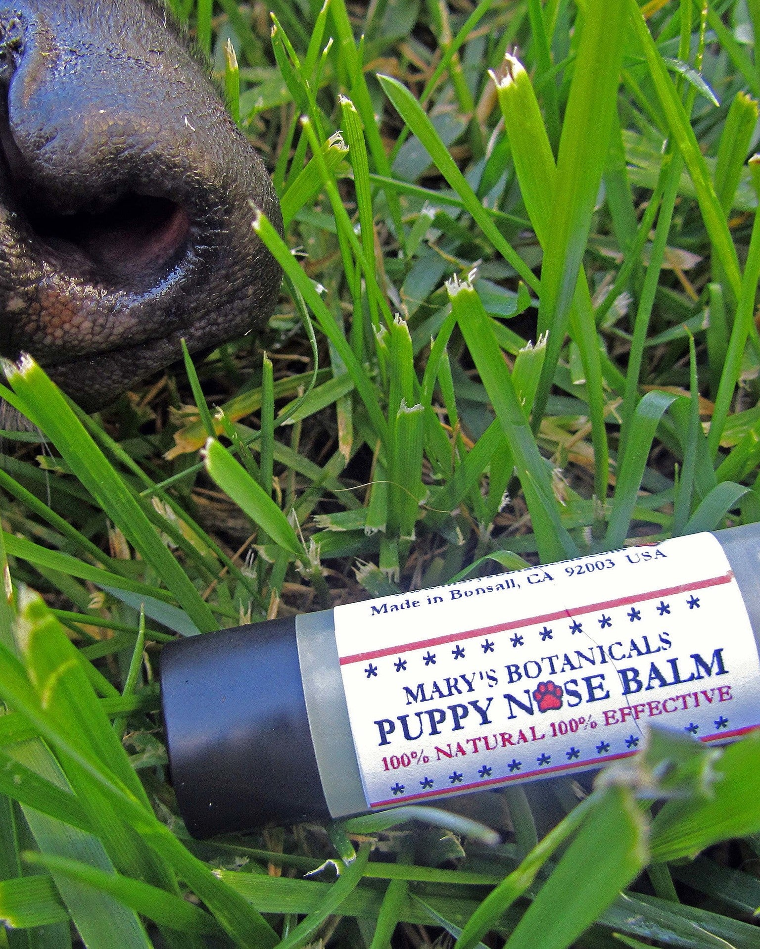 Puppy Nose Balm .15 oz-Mary's Botanicals
