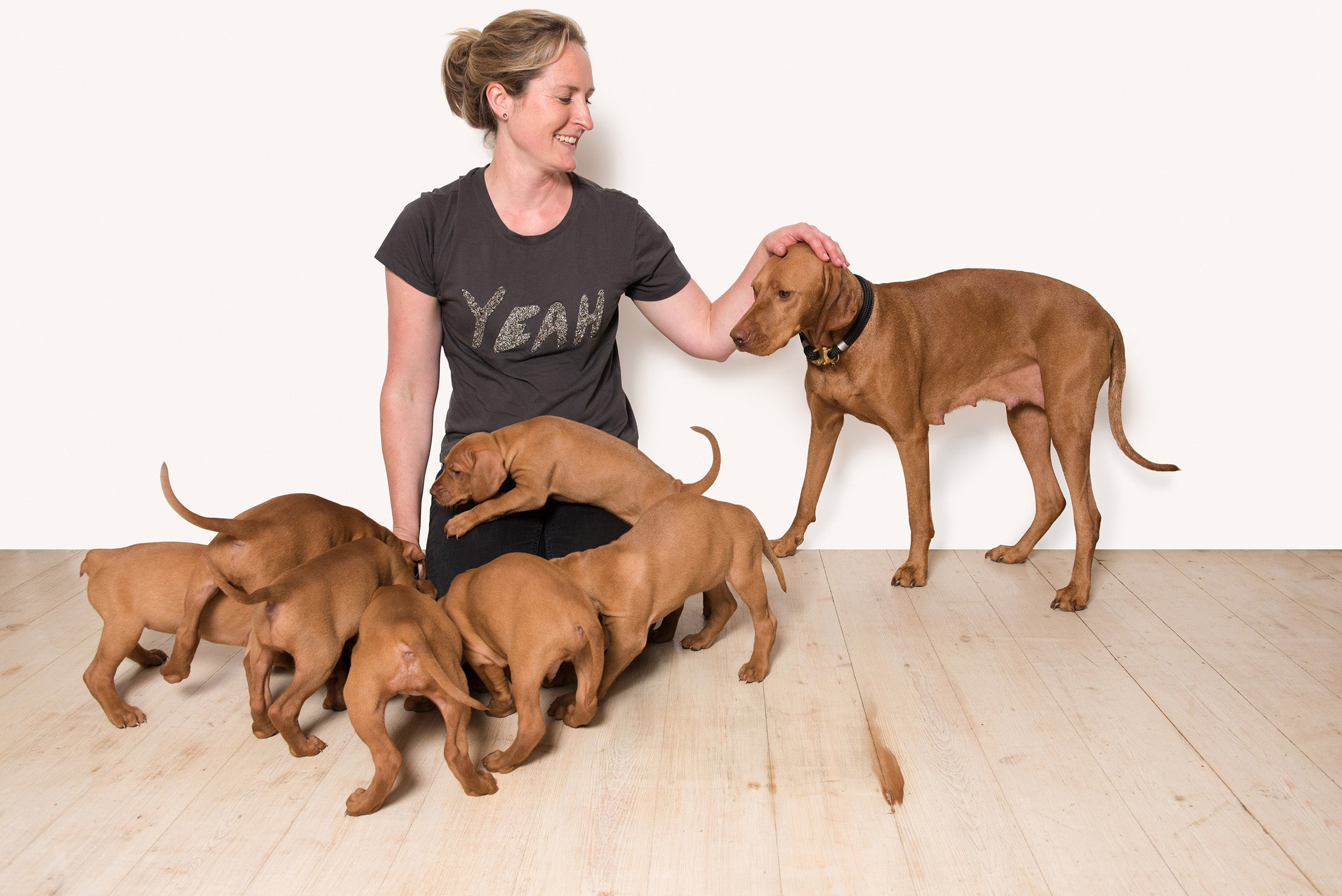 Laura Shaw Founder of Oonalfie gorgeous vizsla puppies
