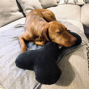 Dog Bone Pillow