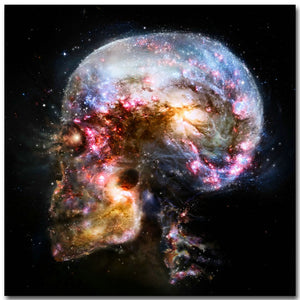 Skull Galaxy Art Silk Poster