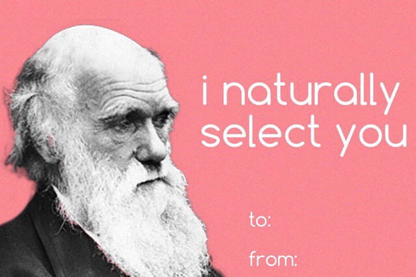 funny charles darwin natrual selection valentines day meme
