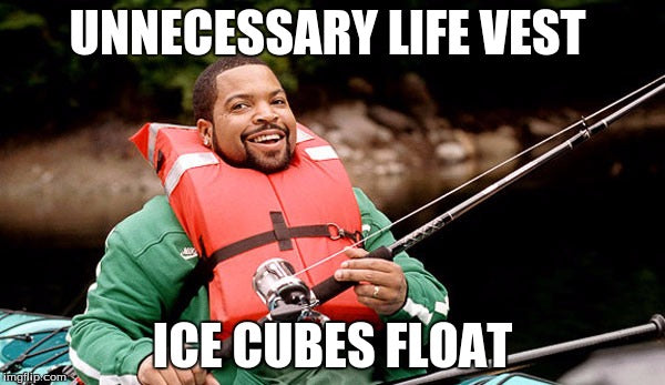 funny ice cube meme for science teachers - ice cubes float