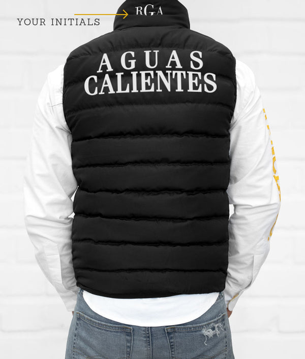 Aguascalientes Men's Down Vest