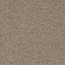 MYSTERIOUS MOMENT #T1324 Malted Beige #16316