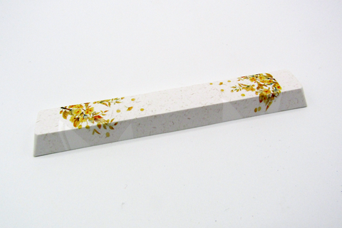 Falling Leaves Spacebar (6.25u)