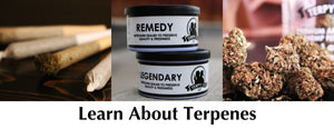 Learn About Terpenes