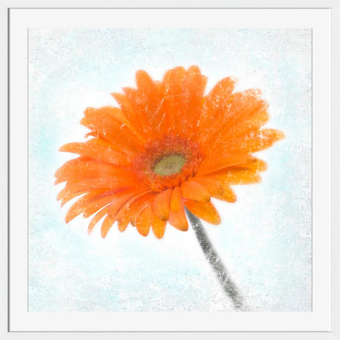 Gerbera Orange - Wall Art-Wall Art-Surya-Wall2Wall Furnishings
