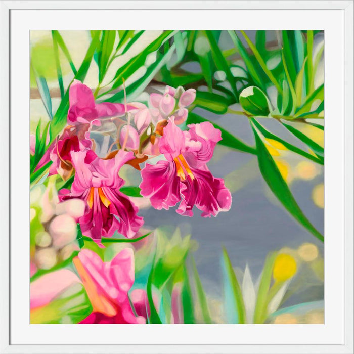 Desert Willow Blossoms - Wall Art