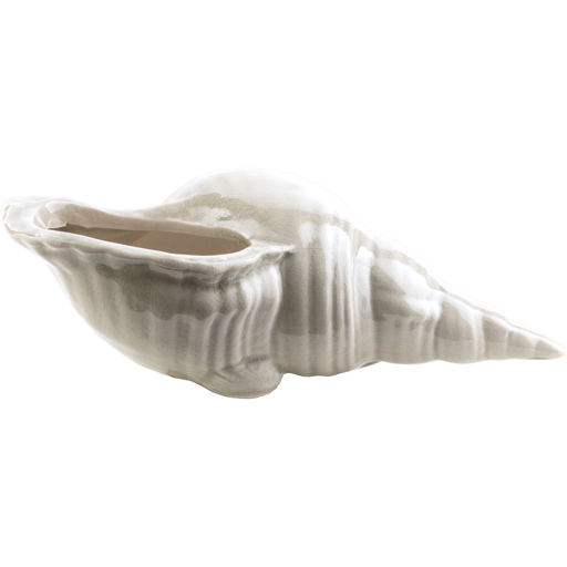 Clearwater Shell 2-Shell-Surya-Wall2Wall Furnishings