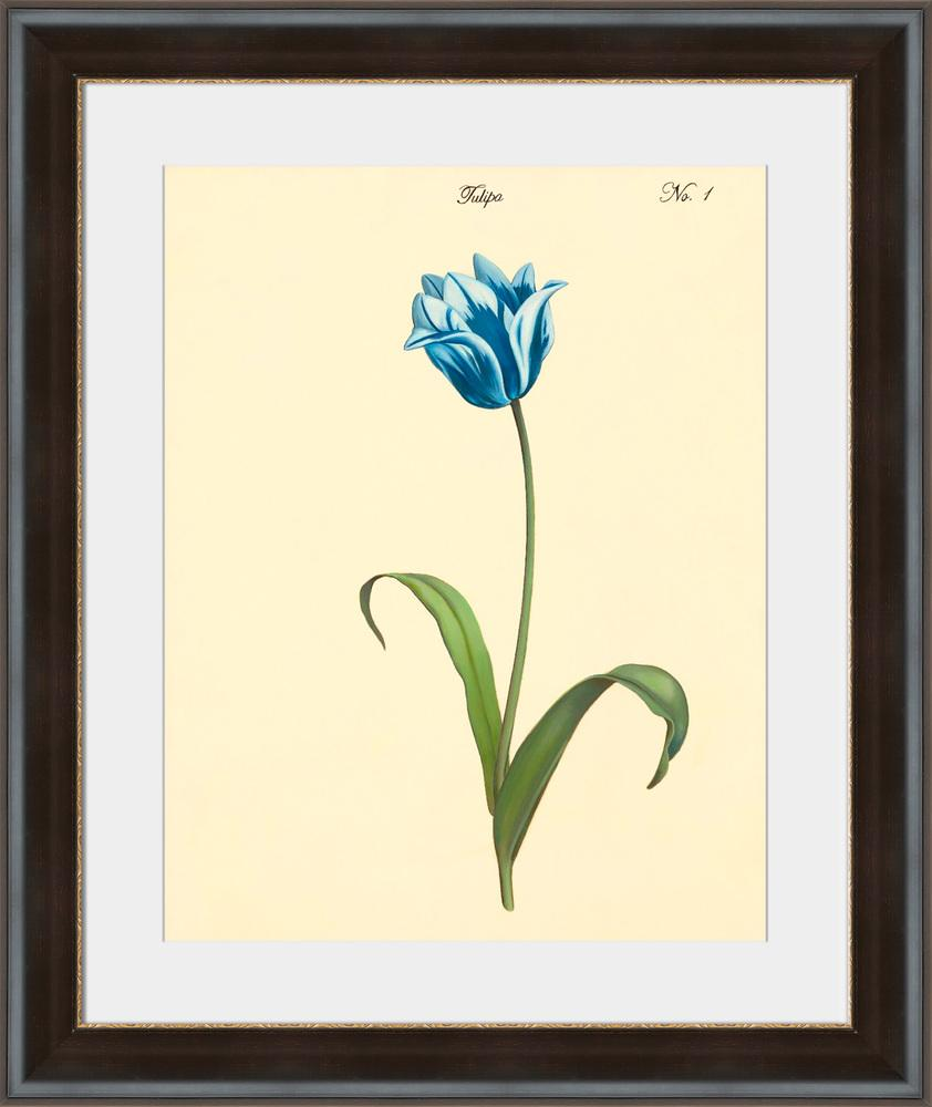 Tulipa No.1 - Wall Art 2-Wall Art-Surya-Wall2Wall Furnishings
