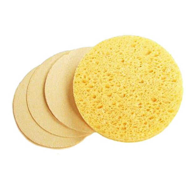 eco Sponges by ecologica of Malibu