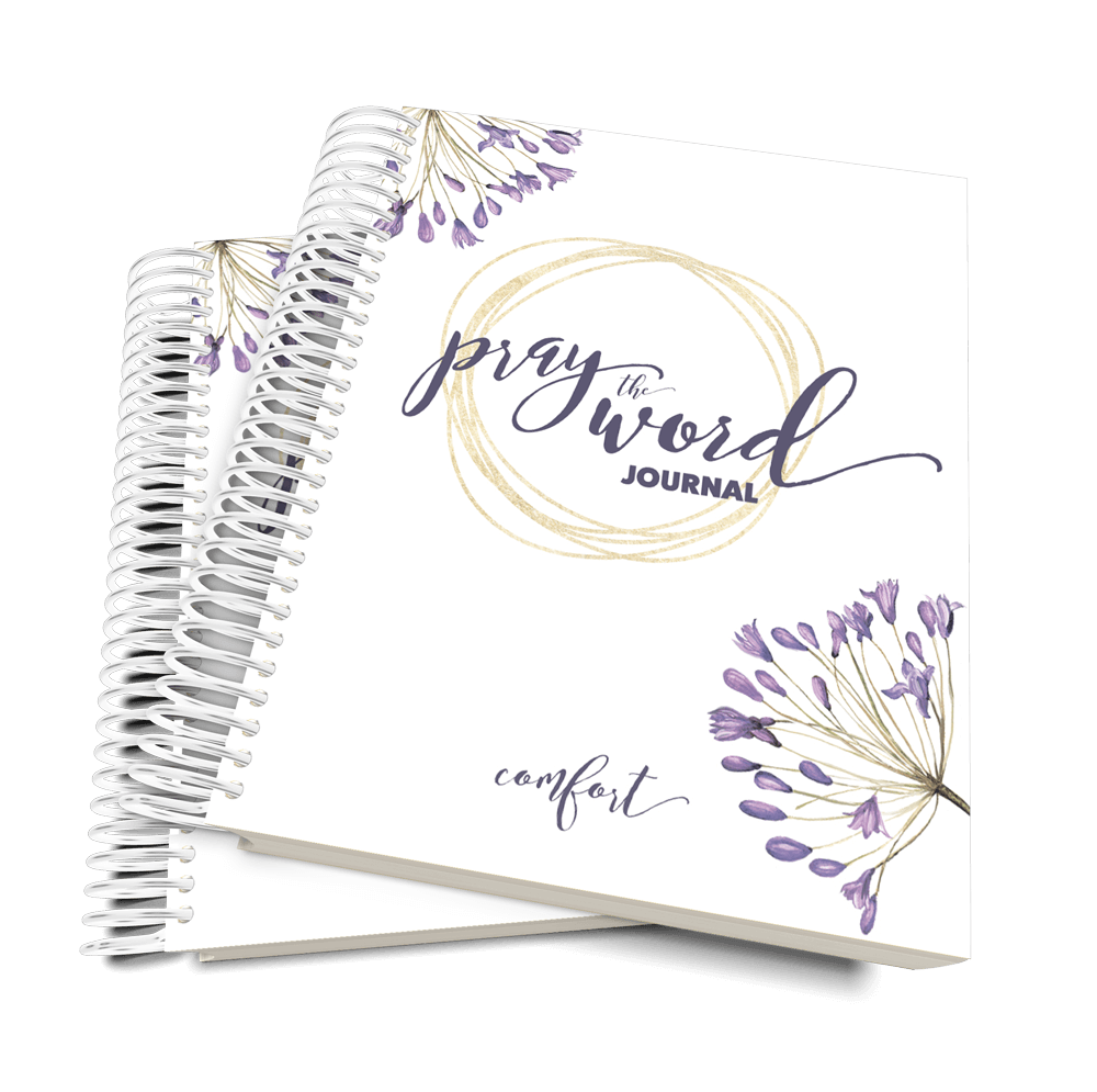 PRE-ORDER - Pray the Word Journal: Summer Edition 10-Book Bundle