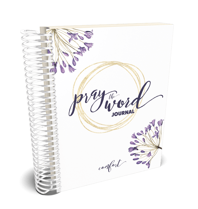 Pray the Word Journal: Comfort Edition - DIGITAL DOWNLOAD ONLY