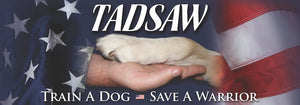 TADSAW logo of soldier and dog holding hands with american flag
