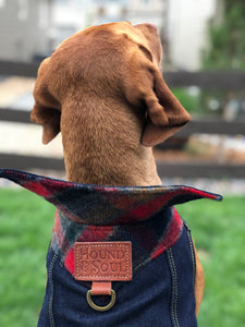 Boulder Denim Dog Jacket
