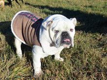 Sundance Shearling Dog Jacket