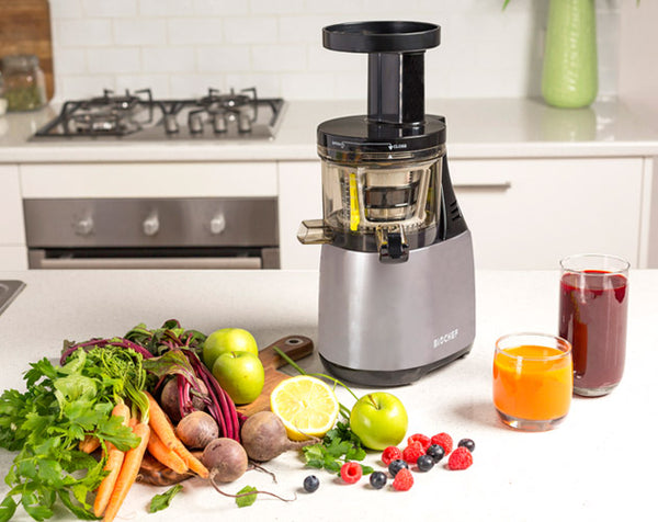 BioChef Synergy Cold Press Juicer