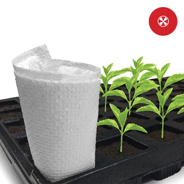 Co2 Producing Pads (10 Pack)