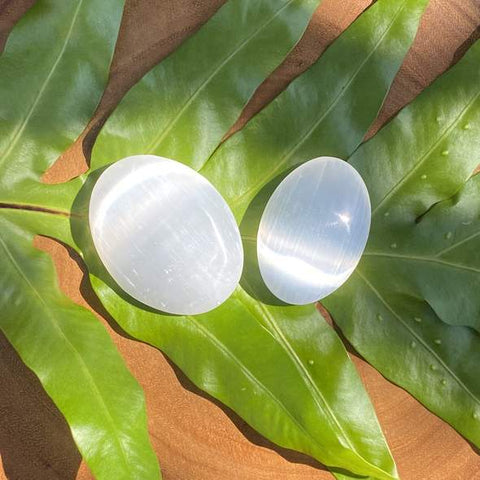 Selenite palm stones on tropical leaf on a wood surface