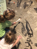 Little kids using brushes and other tools to unearth fossils from the sand at museum