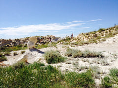 Popular beach with grass where fossils are found