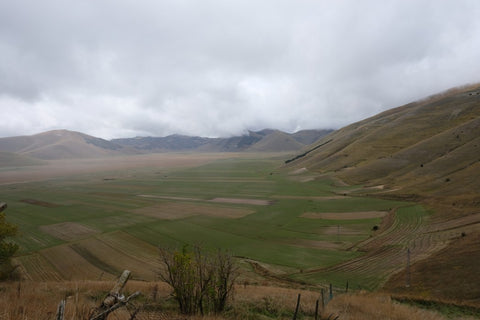 Great Plains field with clouds above