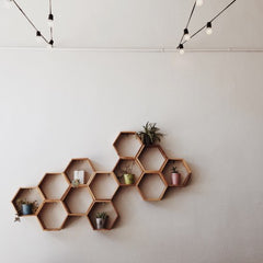 Wooden honeycomb shelving on white wall