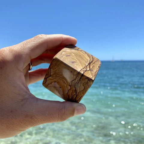 Man's hand holding picture jasper in front of the ocean