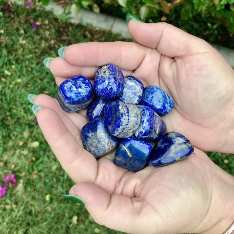 Hands holding several small lapis lazuli pebbles
