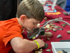 Child looking at fossils through magnifying glass