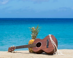 Ukulele and pineapple in front of ocean