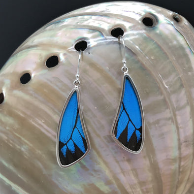 Butterfly Wing Slim Earrings