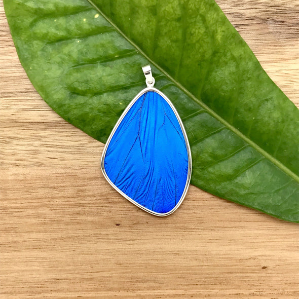 XX Large Butterfly Wing Pendant