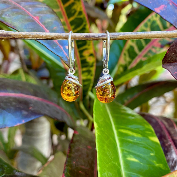 Baltic Amber Earrings- Style 25